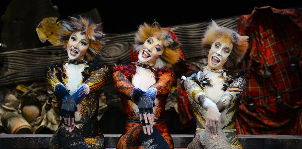 CATS – Das Original in Wien 43696