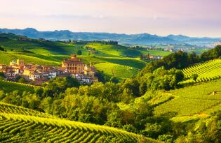 10 Tage Weinreise in Italien 2019