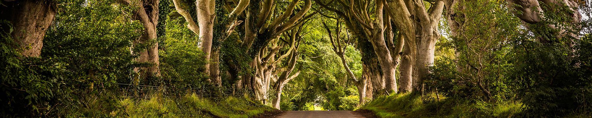 GoT Rundreise – Irland & Nordirland