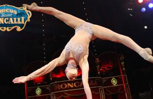 Magie, Tanz und ganz viel Spaß in einer unvergesslichen Zirkusshow