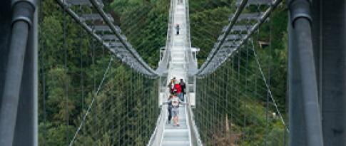 Ticket für die Hängeseilbrücke über die Bodetalsperre