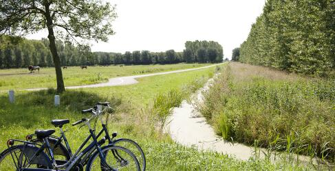 carlton-oasis-rotterdam-11
