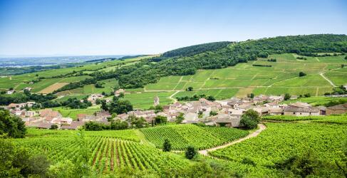Frankreich Rundreise Burgund