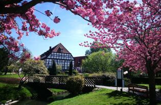 Erleben Sie Wellness der Extraklasse im schönen Nordrhein-Westfalen