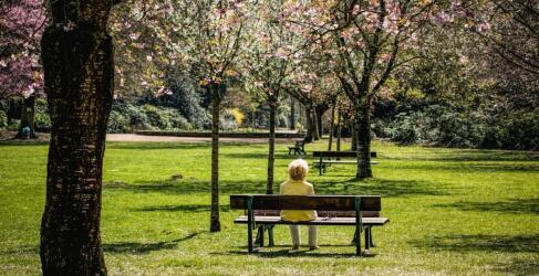 Der bunte Garten in Mönchengladbach