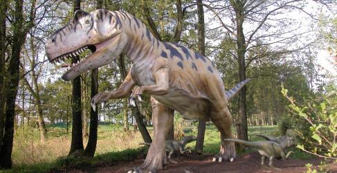 Tolk-Schau Dinosaurier