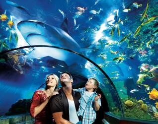 LEGOLAND Billund Sea Life