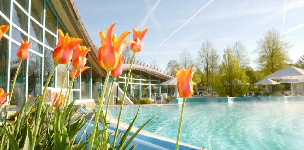 Solemar Therme (4.000 m²)