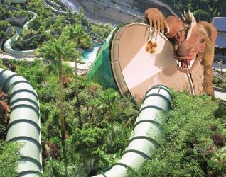 Siam Park Dragon