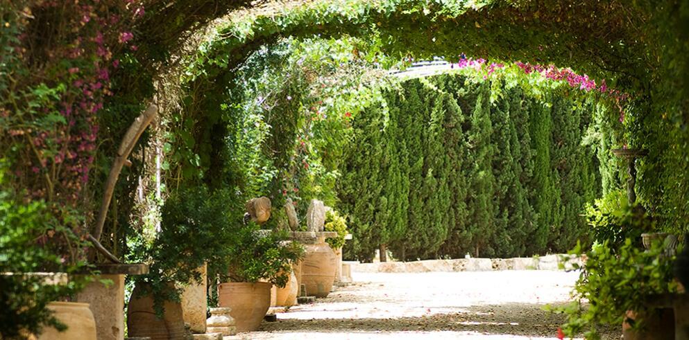 Agroturismo Es Revellar Art Resort 6002