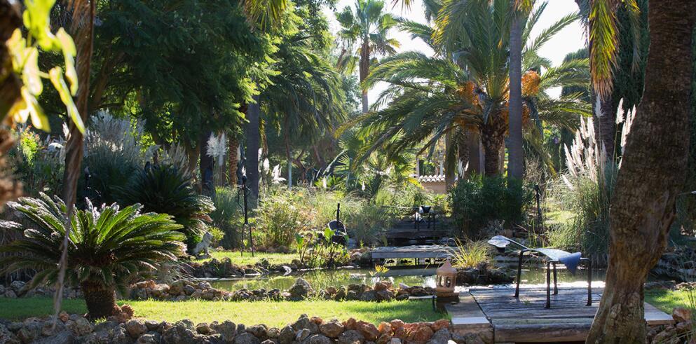 Agroturismo Es Revellar Art Resort 6006