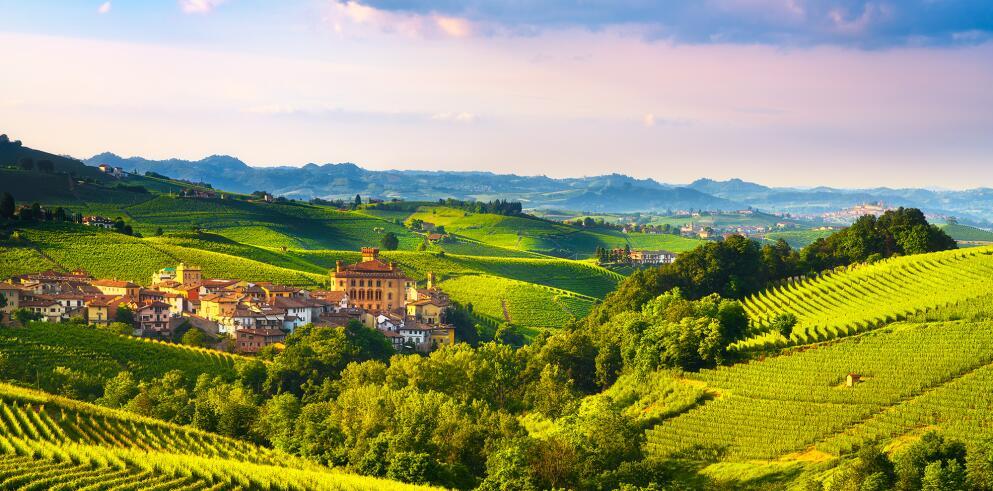Weinreise in Italien: Piemont – Toskana – Venetien 61008