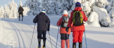 Kostenloses Shuttle zu den Skigebieten