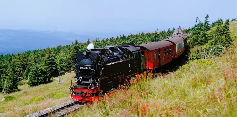 Brockenbahn Zugfahrt 63673