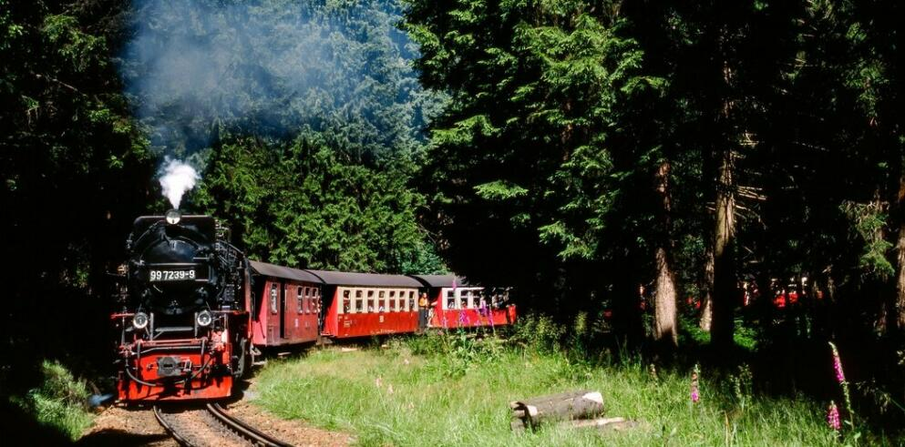 Brockenbahn Zugfahrt 63677