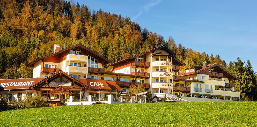 Hotel Alpina Kössen 64737