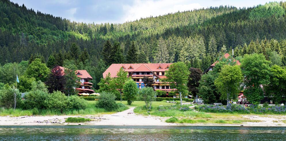 Wellnesshotel Auerhahn Schluchsee 66051