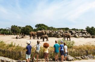 4* Van der Valk Vught mit Safaripark Beekse Bergen