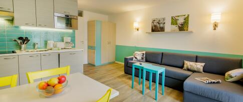 Comfort Apartment für bis zu 4 Personen (218)