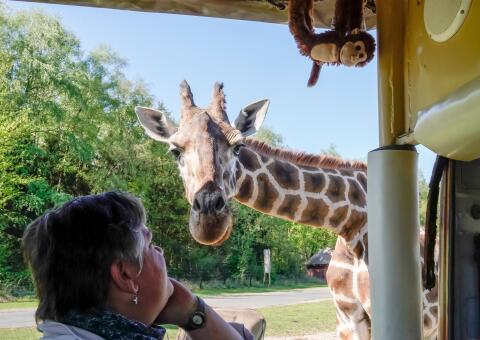 Hotel Heide Kröpke + Serengeti Park