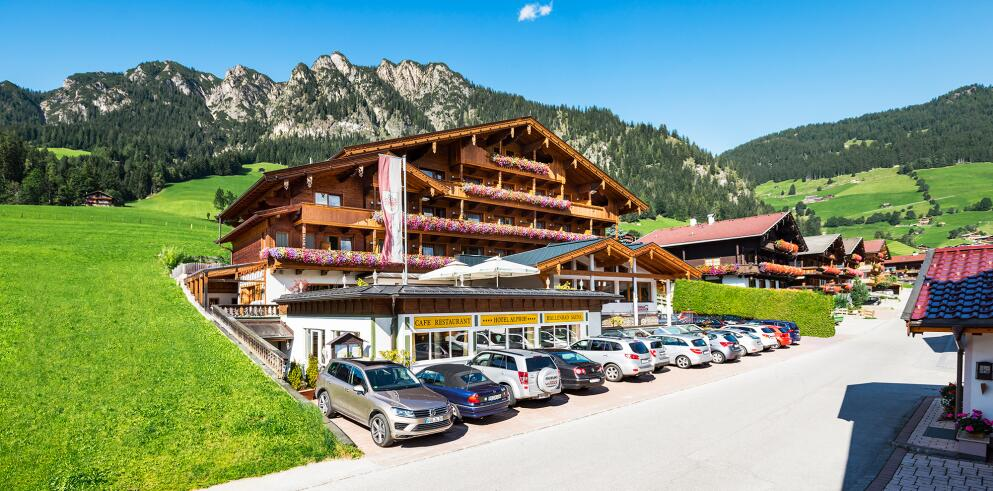 Hotel Alphof Altbach-1