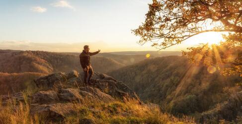 Erholung im Harz