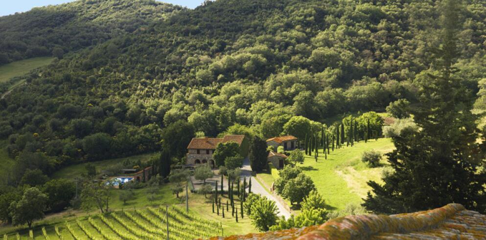 Relais Villa Monte Solare 7487