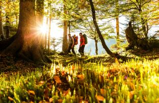 Aktiv & Wohlbefinden in unberührter Natur inmitten der Chiemgauer Alpen