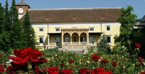 Schloss Weikersdorf-1