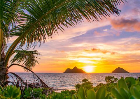 18-tägiges Special: Hawaii Kreuzfahrt + Citytrip L.A. auf der Grand Princess