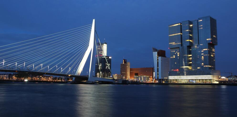 SS Rotterdam 9491